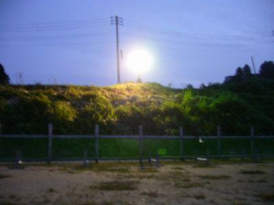 7/26welinadogpark