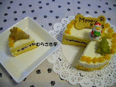 クリスマスケーキ断面