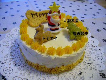 ワンちゃん用クリスマスケーキ♪