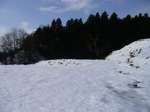 2008-1210-1.JPG