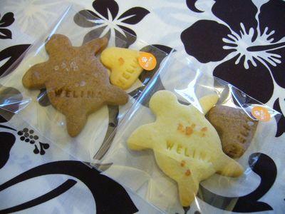 ホヌ塩クッキー