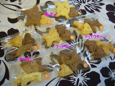 各種塩クッキー