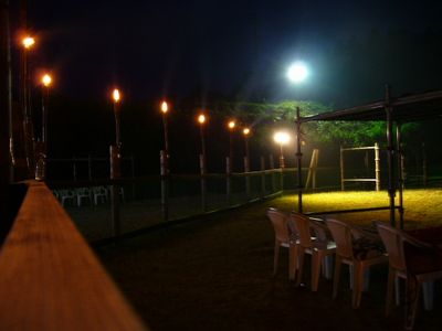 7/31welinadogpark