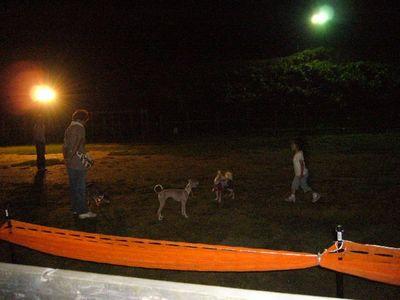9/15welinadogpark