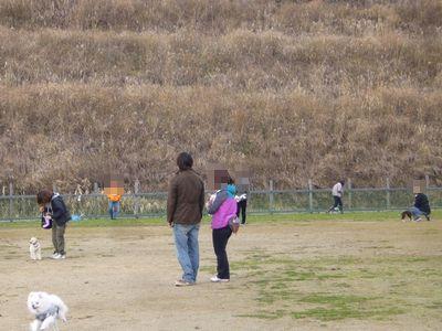 12/11welinadogpark