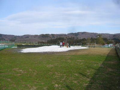 4/8welinadogpark