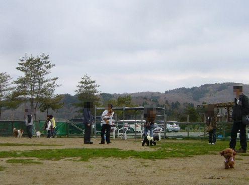 4/29welinadogpark
