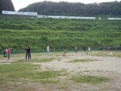 7/17welinadogpark