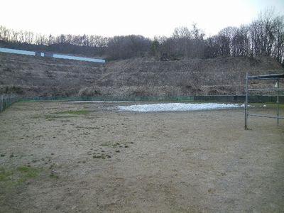 4/19welinadogpark