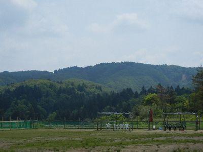 5/26welinadogpark