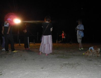 8/20welinadogpark