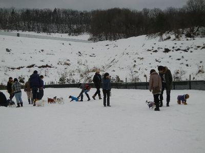 12/16welinadogpark