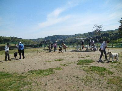 5/18welinadogpark