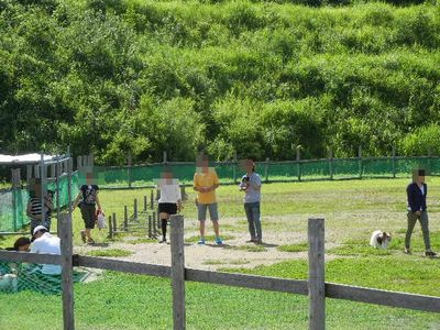 7/15welinadogpark