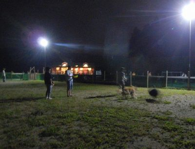 8/17welinadogpark
