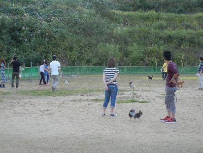 9/23welinadogpark