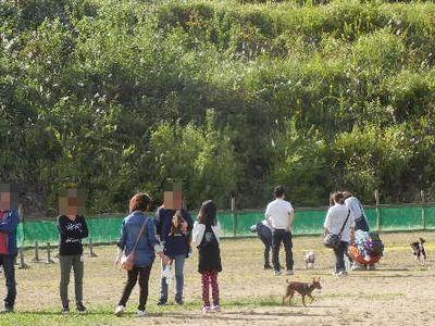 10/13welinadogpark