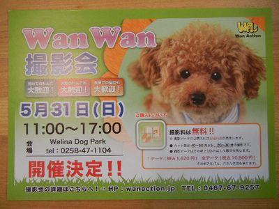 Wan Wan撮影会